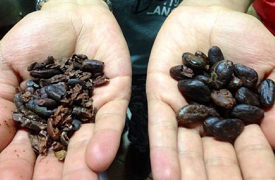 Guatemala: the chocolate in the heart of the Maya!