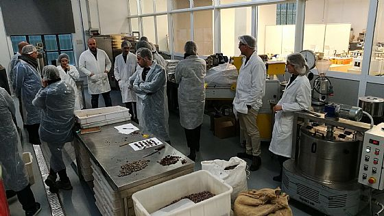 Bean to Bar Course with Fermento Cacao...